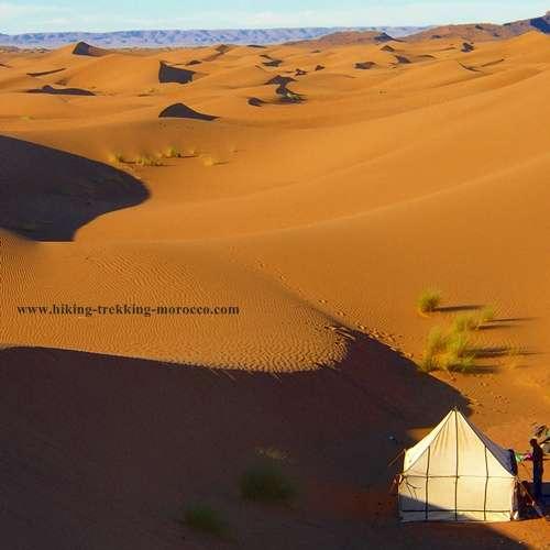 Camel trekking desert Morocco